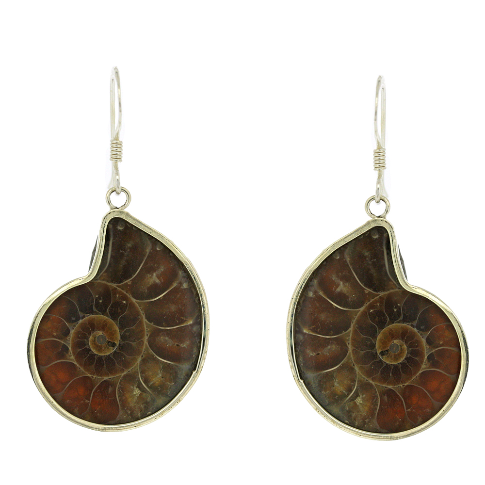 Bespoke Ammonite Earrings