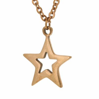 Nova Steel Rose Gold Star Necklace