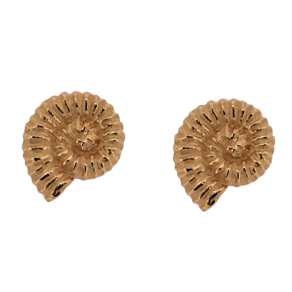 Kitten Ammonite Stud Earrings
