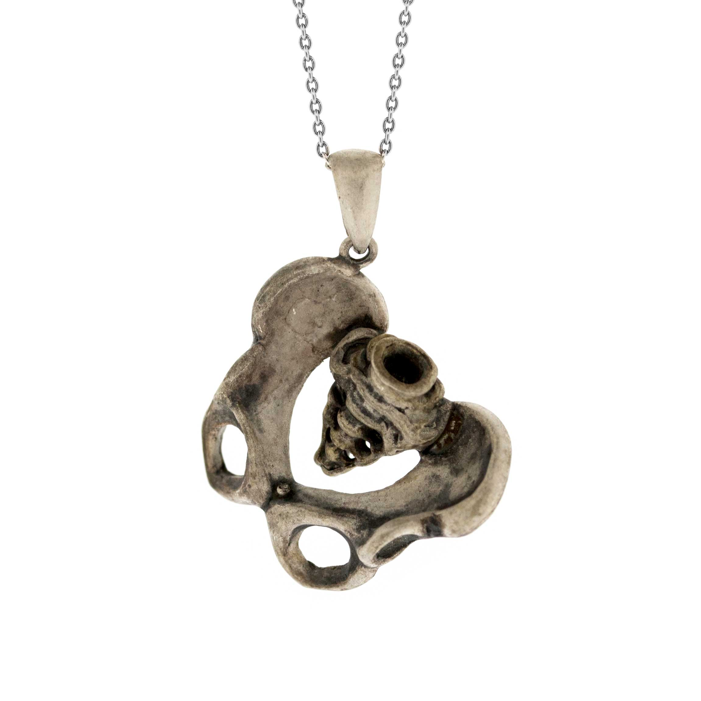 Tooth and Claw Human Pelvis Pendant